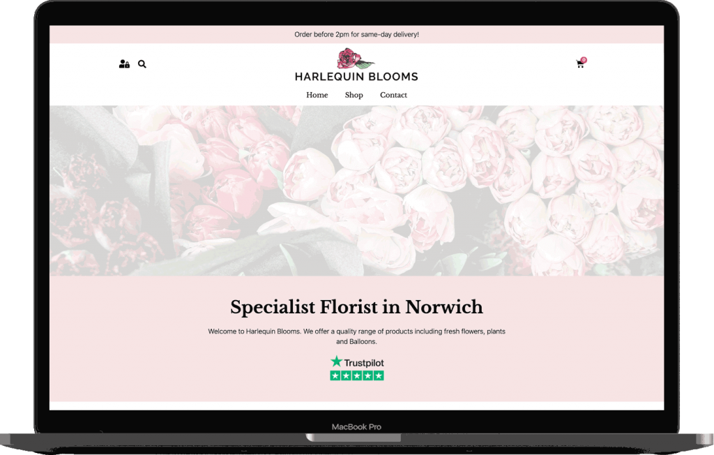 Harlequin Blooms Website Design Mockup
